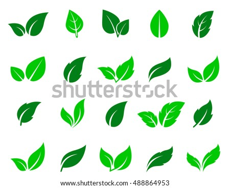 Green abstract leaf icons natural set on white background. Vector illustration. Royalty-Free Stock Photo #488864953