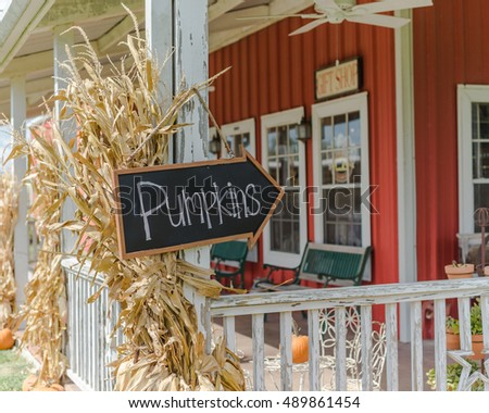 Vintage wooden board with Pumpkins word sign at entrance of red barn with dried corn stalks straw and bright orange pumpkin. Rural scene at La Grange, TX, USA. Fall, Halloween, Thanksgiving concept.