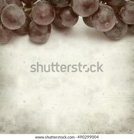 textured old paper background with fresh red grapes clusters #490299004
