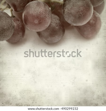 textured old paper background with fresh red grapes clusters #490299232