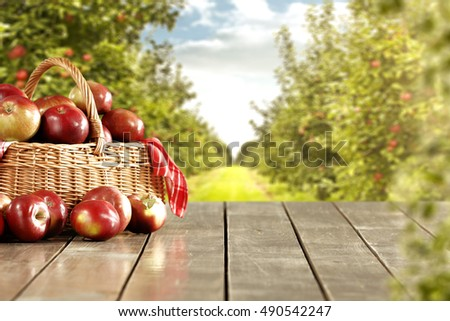 fresh apples and garden place