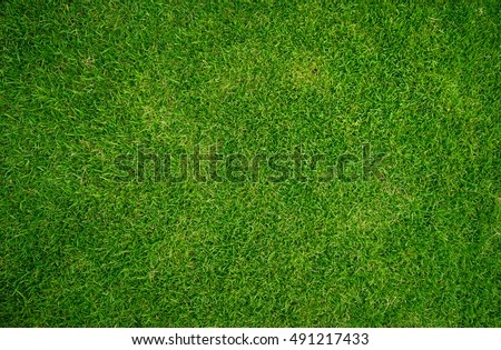 Nature green grass texture background, Top view of grass Ideal concept used for making green flooring, lawn for a training football pitch, Grass Golf Courses green lawn pattern textured background.