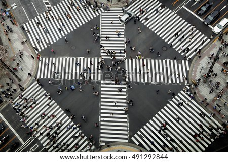 crosswalk #491292844