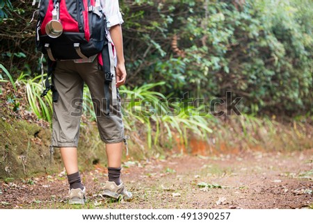 Woman hiking through a forest in the countryside #491390257