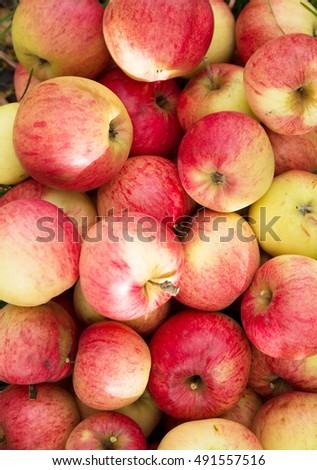 Group of fresh red apples, background #491557516