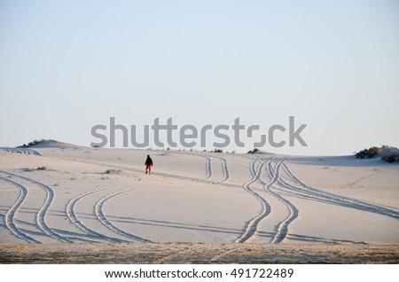 Desert tracks #491722489