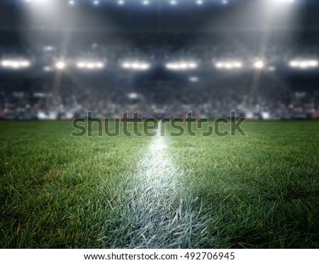 stadium imaginary Royalty-Free Stock Photo #492706945