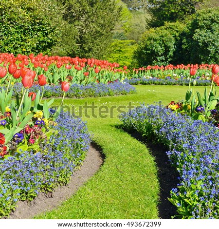 Flowerbeds and Winding Path in a Beautiful Landscape Garden #493672399