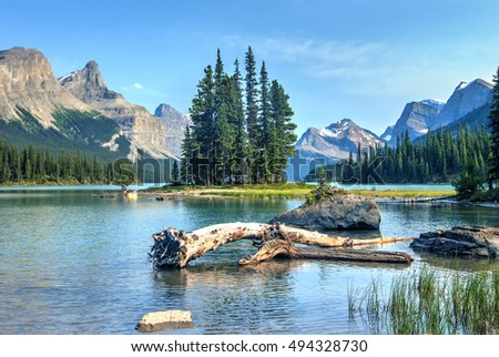 Spirit Island at Maligne Lake, Jasper National Park, Canada #494328730