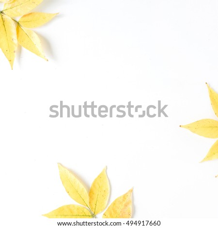 yellow fall autumn leaves. Autumn floral frame. flat lay, top view #494917660