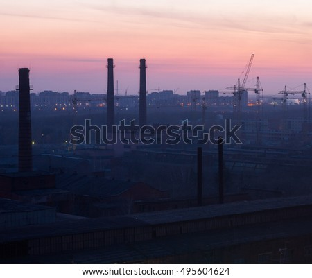 Pipe plant at sunset #495604624