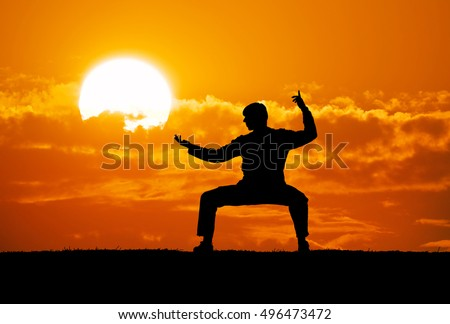 Silhouette warrior motorcycle. Element of martial art design. Royalty-Free Stock Photo #496473472