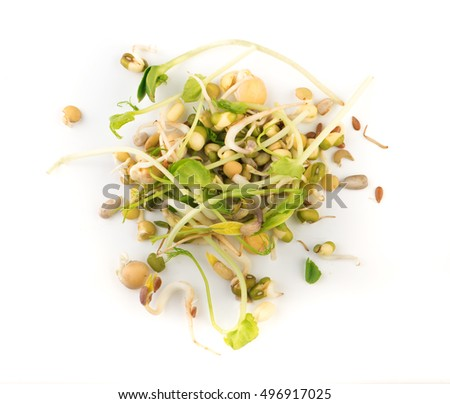Mix of sprouted flax, peas, mung bean, sunflower, wheat, lentil seeds isolated on white background. vegan, raw food diet #496917025