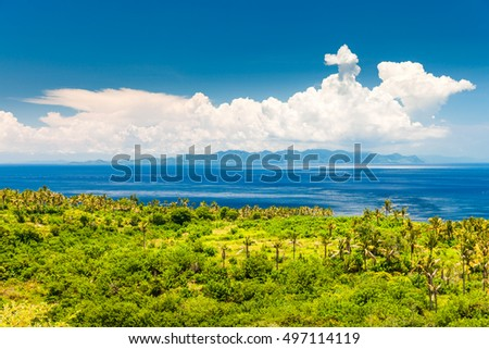 Top view on the tropical nature of the island Bali / Indonesia #497114119