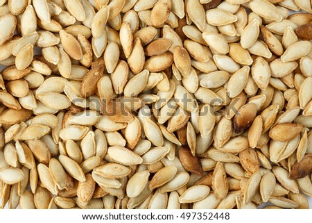 Unshelled pumpkin seeds, roasted with salt. Healthy food background #497352448