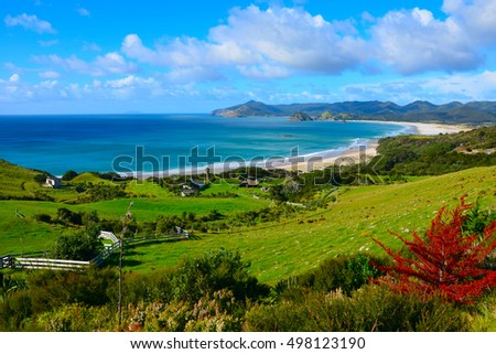 Coastal Path and beach in Great Barrier Island, New Zealand #498123190