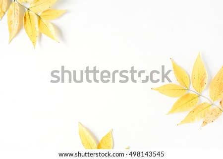 yellow fall autumn leaves. Autumn floral frame. flat lay, top view #498143545