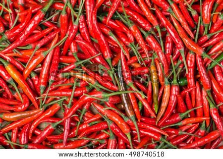 red chili background #498740518