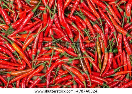 red chili background #498740524