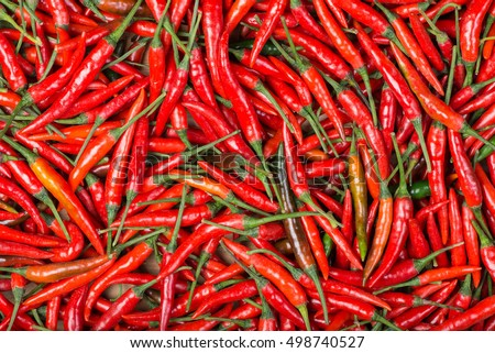 red chili background #498740527