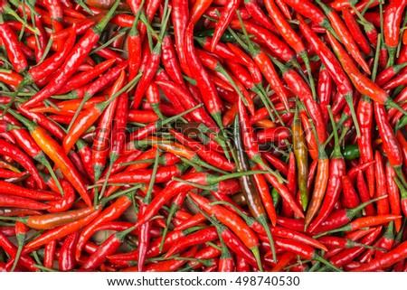 red chili background #498740530