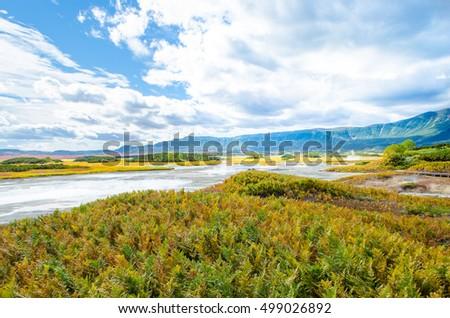 Russia, Kamchatka, Valley of Geysers #499026892