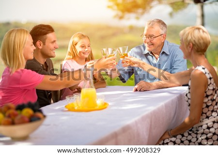 family celebrate party picnic joyful lifestyle drinking concept #499208329
