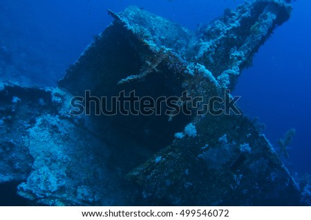 Aida wreck, Red sea, Egypt #499546072