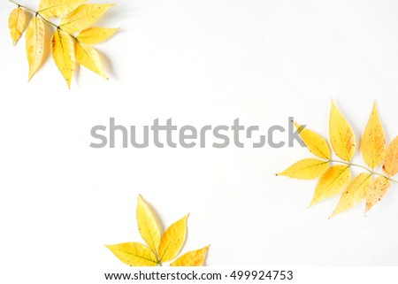 yellow fall autumn leaves. Autumn floral frame. flat lay, top view #499924753