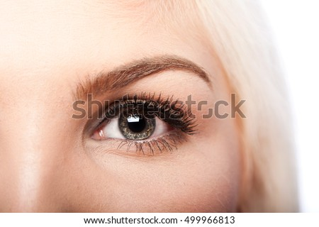 Beautiful eye with long lashes and eyebrow of Caucasian woman #499966813