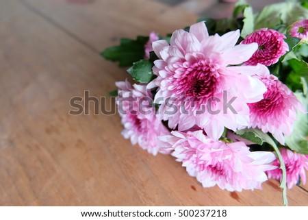 mum flowers on wooden, in valentine's day #500237218