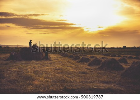 image silhouettes of farmers working in sunset #500319787