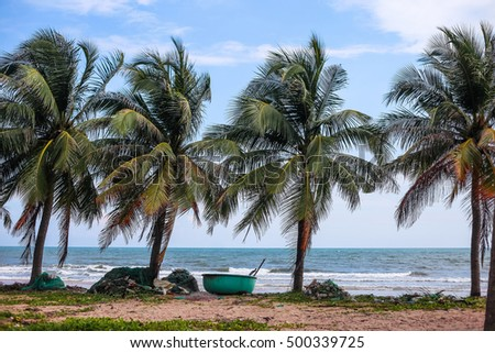Vietnam boats on the coast with palms in the Mui Ne, Vietnam #500339725
