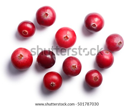 Wild cranberries (Vaccinium oxycoccus), top view. Clipping paths, shadow separated. Layers: https://goo.gl/ByzWR6 #501787030