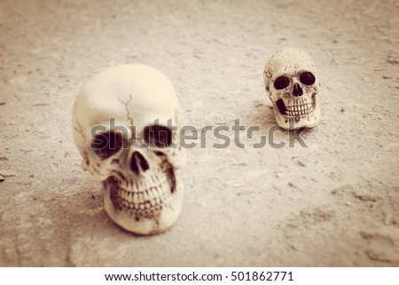 Human skull on cement background. #501862771