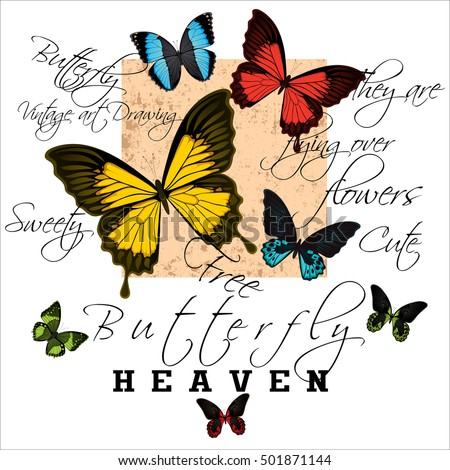 Butterfly with text vintage illustration pattern on white background #501871144