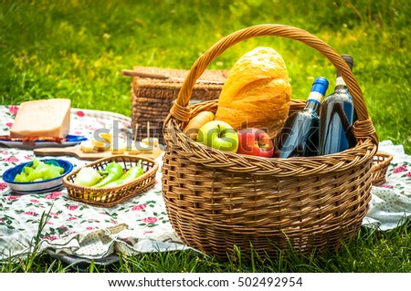 Picnic in the Park #502492954