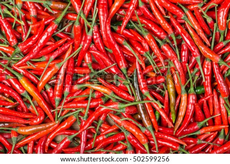 Pepper fresh or Red chilli background  #502599256