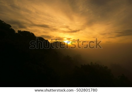 Misty Autumn sunrise with trees in the countryside #502801780