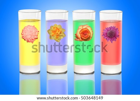 Four drinking glasses containing different colored liquids and each one decorated with a different flower head design. (All parts of image are my copyright)