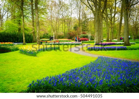 Colourful Flowerbeds and Winding Pathway in an Dutch Formal Garden, retro toned #504491035