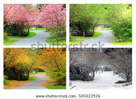 Spring, Summer, Fall and Winter. Four seasons photographed on the same street from the exact same location.  Royalty-Free Stock Photo #505022926