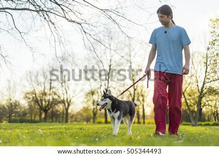 Young man walking his husky dog in a park on a sunny day #505344493