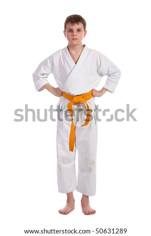 Little boy (child) practice karate isolated on white background #50631289