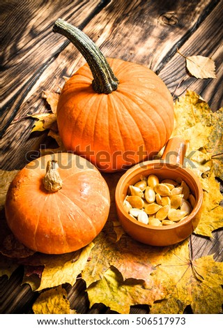 Autumn harvest. Pumpkin seeds with the maple leaves. On a wooden table. #506517973