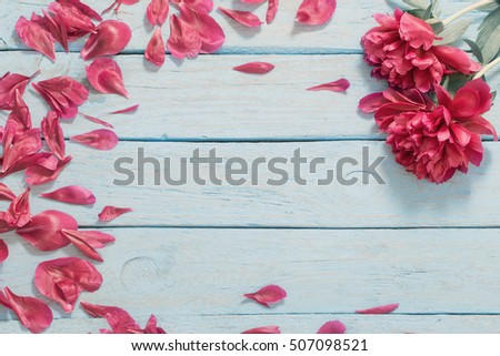 peonies on blue wooden background #507098521