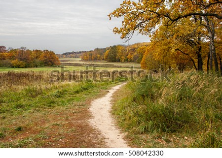 Gold autumn #508042330