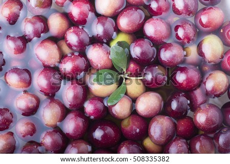 Marinated olives, horizontal / Olives #508335382