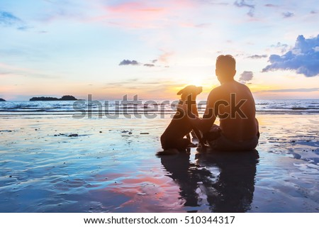 friendship concept, man and dog sitting together on the beach at sunset #510344317