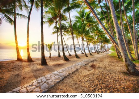 Sunrise at Palm Cove in Cairns, Tropical North Queensland #510503194